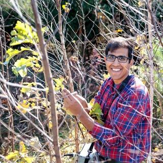 Shan Kothari – Postdoctoral Researcher